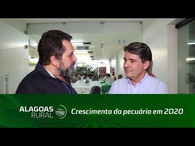 Associação dos Criadores de Alagoas aposta em crescimento da pecuária em 2020