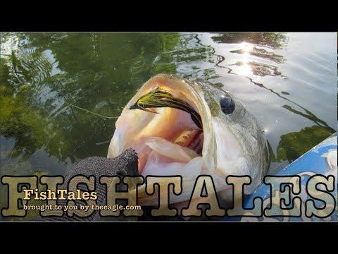 FishTales: The Big Fish Brazos