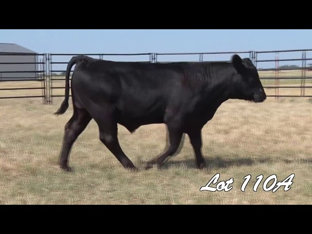 Pollard Farms Lot 110A