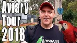 Parrots 2018 Aviary Tour
