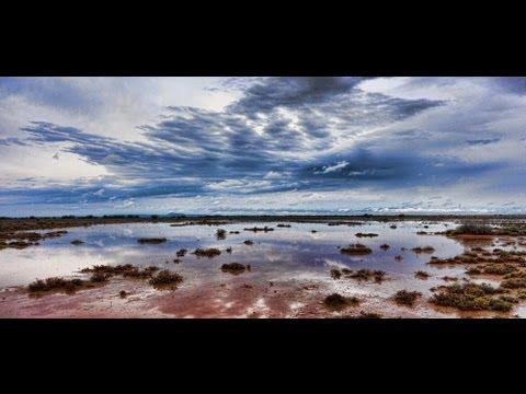 Karoo Rain