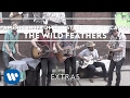 The Wild Feathers - American (from the streets of Chicago)