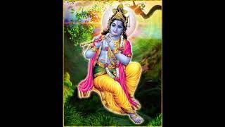Krishna Madhava, Madhava Krishna