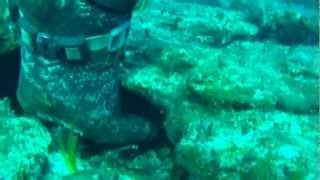 grouper10kg.spearfishing Cyclades/Ψαροντούφεκο στις Κυκλάδες ροφός10k.