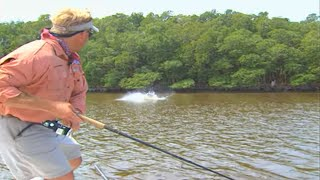 Monster Tarpon Fish on Plugs in Florida Everglades National Park