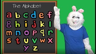 Alphabet Song | Letters | Preschool fun | Bunny ABC | fun learning videos for kids
