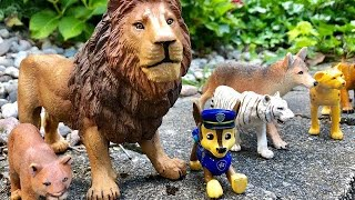 Paw Patrol Toys LIONS and TIGERS Fun Facts For Kids