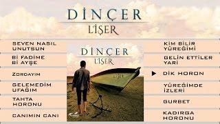 Gambar cover Dinçer - Dik Horon
