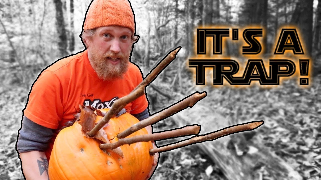 Download First Trap I Built in Patagonia On Alone Primitive Deadfall / Spike Pit Trap (87 Days Episode 13)