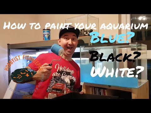How To & What Colour To Paint Your Aquarium Background