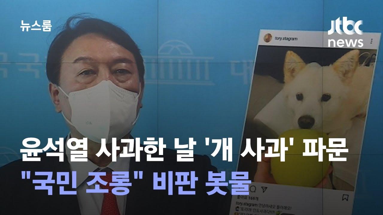 "Download 윤석열 사과한 날 '개 사과' 파문…""국민 조롱"" 비판 봇물 / JTBC 뉴스룸"