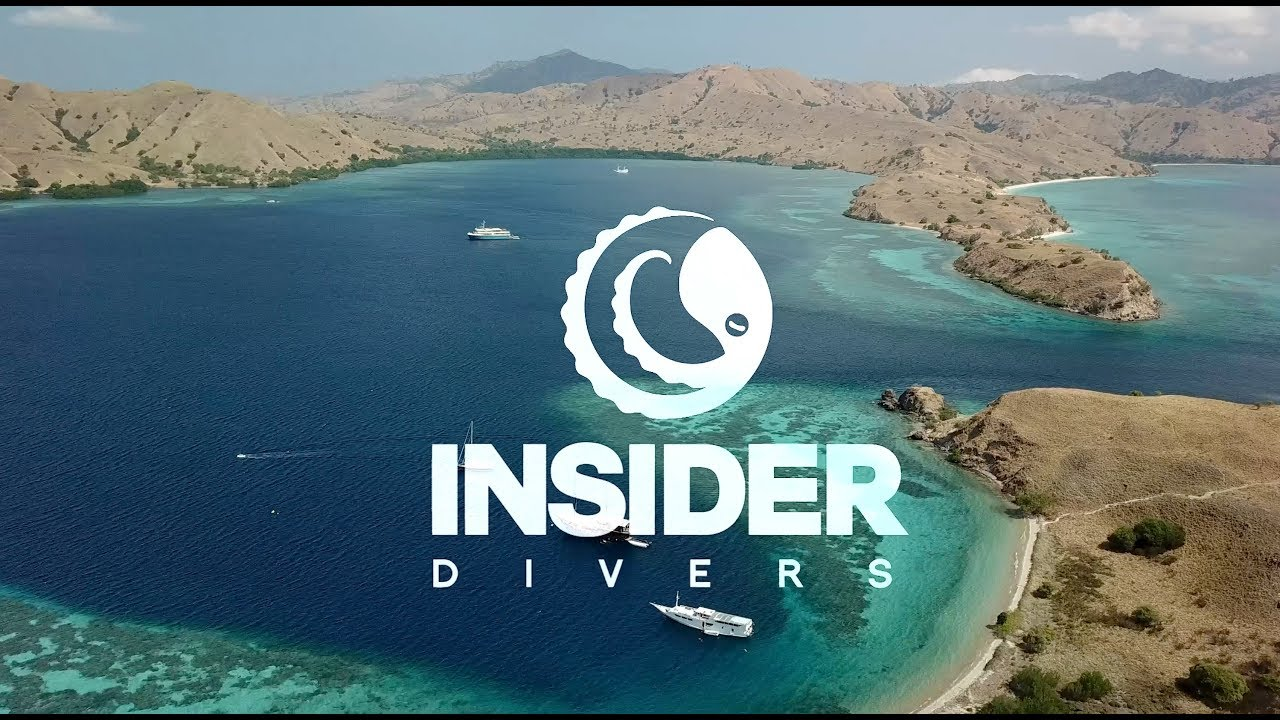 INSIDER DIVERS - Intro Video