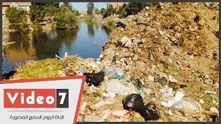 """مصرف """"الرهاوى"""".. كارثة صحية وبيئية تهدد الملايين بالفشل الكلوى"""