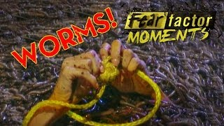 Fear Factor Moments   Worm Tangle