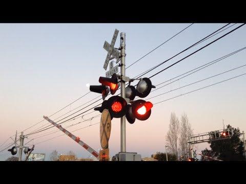 Mayhew Road Railroad Crossing, Sacramento Light Rail Trains Gold Line