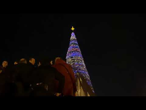 Armenia Yerevan Central Square Christmas Tree / Армения Ереван Центральная площадь елка / Hraparak