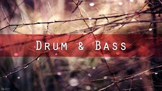 Kamron Schrader - Rainy Day (Original Mix) [Drum & Bass I Emergent Music]