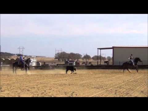 David Key & Brad Culpepper Team Roping Practice Runs WWW.KEYDUPRODEO.COM