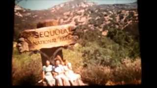 Sequoia Natl Park, General Sherman Tree, Sledding Fails, 1938