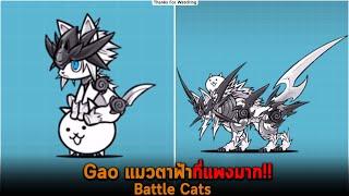 Gao แมวตาฟ้าที่แพงมาก Battle Cats