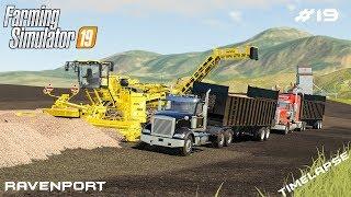 Selling 1.500.000$ worth of sugar beet| Timelapse on Ravenport|Farming Simulator 19 | Episode 19