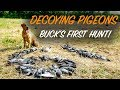 Pigeon Hunting With a NEW Dog! | Just Hunt Club