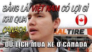 🇨🇦Du lịch Canada mua xe oto 🚗Bằng lái xe Việt Nam có lái được ở Canada    Quang Lê TV #127