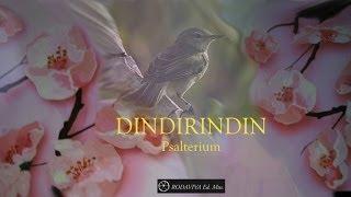 DINDIRINDIN