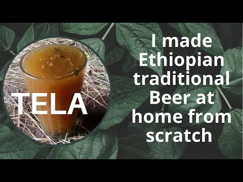 I made my favorite drink Tela / Ethiopia beer. ጠላ ጠመቅኩ።
