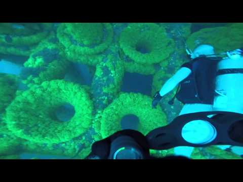 Offshore diving trip '15