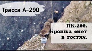 ТРАССА А290/ ПК176/ ЕНОТ НА СТРОЙКЕ/ ТРАССА НА КРЫМ/ КРАСНОДАРСКИЙ КРАЙ