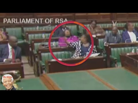 Must Watch Funny - ANC MP Sleeps In Parliament