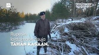 """PERJANTAI: """"Risujemmaaja"""" Jorma Hirvonen: """"Eikö tämä lopu ikinä"""""""