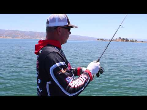How to Fish a Wacko Senko with Mark Lassagne