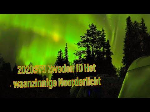 2020#79 Zweden 10
