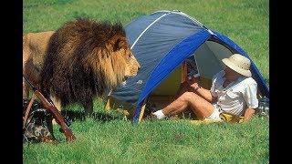 Большая подборка нападений животных на человека