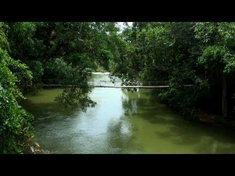 Nisargadhama Forest, Kodagu