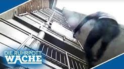Waghalsige Kletteraktion! Warum stürzt Patrick vom Geländer? | Die Ruhrpottwache | SAT.1