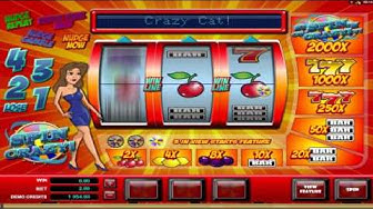 Spin Crazy ™ free slot machine game preview by Slotozilla.com