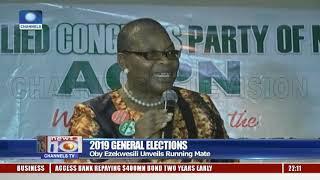 2019 Elections Oby Ezekwesili Unveils Running Mate