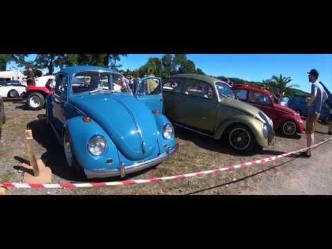 European Bug-In 8 - Aircooled Junkies