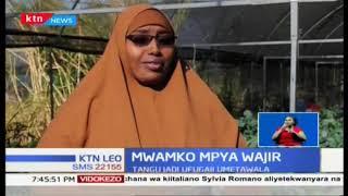 wanawake-wafaulu-katika-kilimo-kaunti-ya-wajir-mwako-mpya-wajir