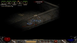 Diablo 2 амазонка