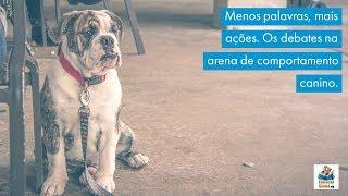 Menos palavras, mais ações. Os debates na arena de comportamento canino.