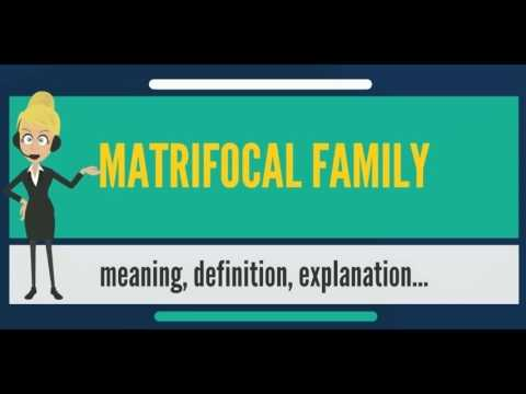 What is MATRIFOCAL FAMILY? What does MATRIFOCAL FAMILY mean? MATRIFOCAL FAMILY meaning from YouTube · Duration:  7 minutes 29 seconds