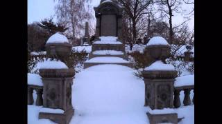 Green-Wood Cemetery Winter Brooklyn  NYC