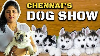 கண்கவரும் Chennai's Dog Show : Cutest Dog Collection | Madras Canine Club