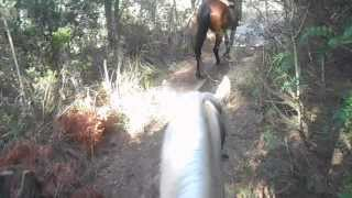 Horseriding in the mountains - Mallorca