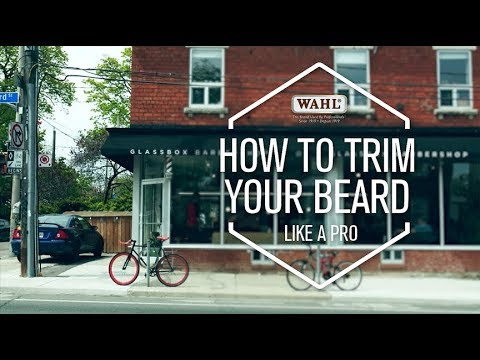 WAHL CANADA CONSUMER - HOW TO TRIM LIKE A PRO | With Dylan Portner from Glassbox Barbershop