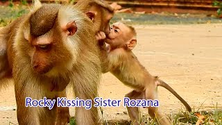 So Sweet Baby Rocky Kissing With His Sister Rozana / How Adorable Rocky Find Food On The Green Grass
